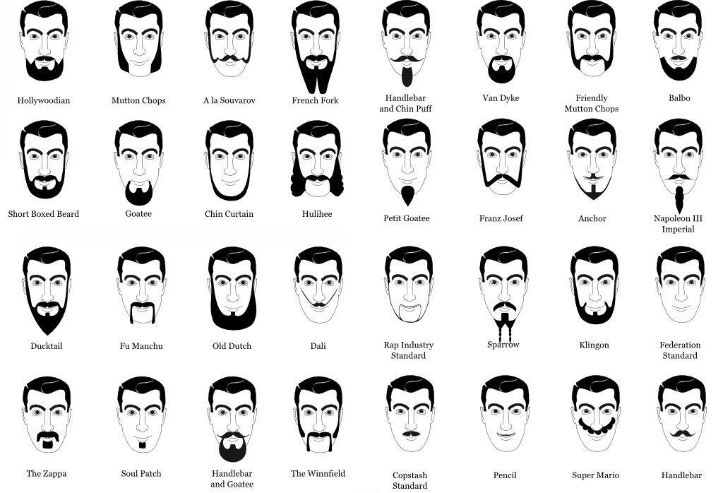 Barber kielce rodzaje brody